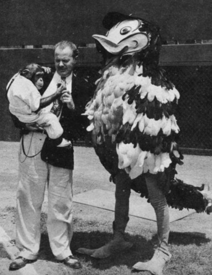 The original Mr. Oriole logo was drawn by Jim Hartzell of the Baltimore Sun. Dick Armstrong then created the major leagues' first performing mascot via a costume based on Hartzell's drawing. (BALTIMORE ORIOLES)